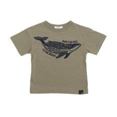 タイポクジラTシャツ