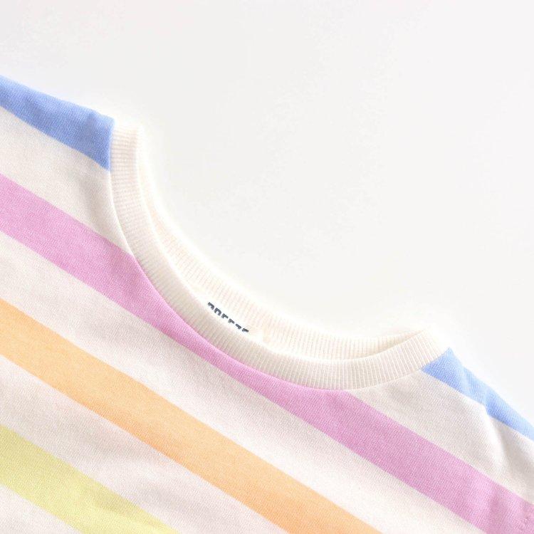 ボーダー 半袖