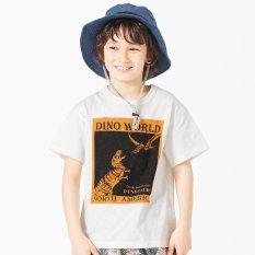 ボックス恐竜Tシャツ