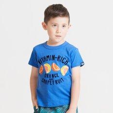 3柄フルーツTシャツ