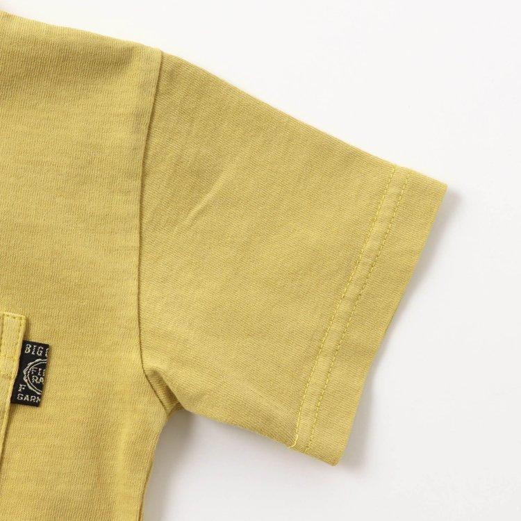 半袖 胸ポケット