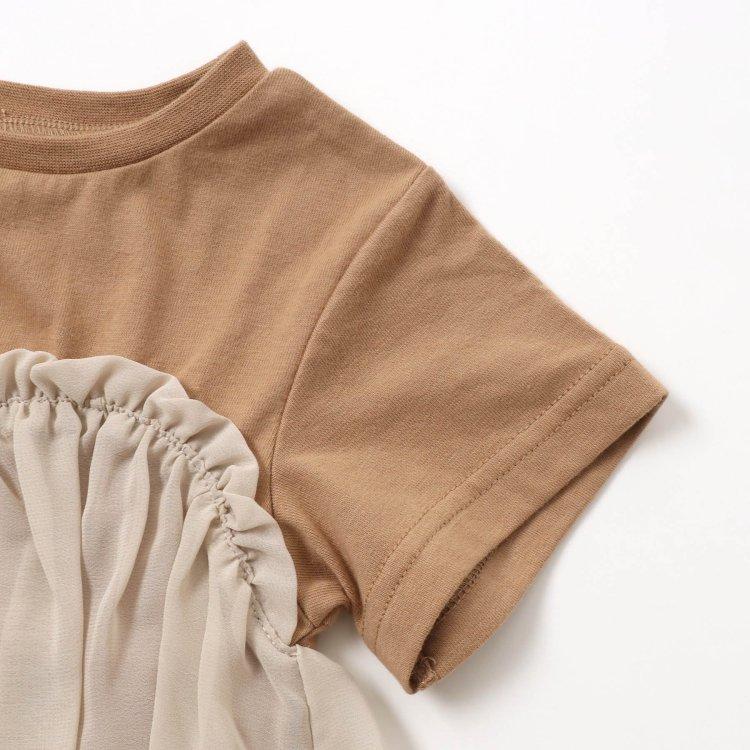コットン 半袖